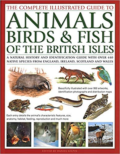 animals, birds & fish of british isles: the complete illustrated guide to: a natural history and identification guide with over 440 native species